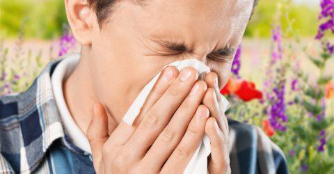 Hogyan segítenek a kiegészítők az allergia kezelésében, megelőzésében